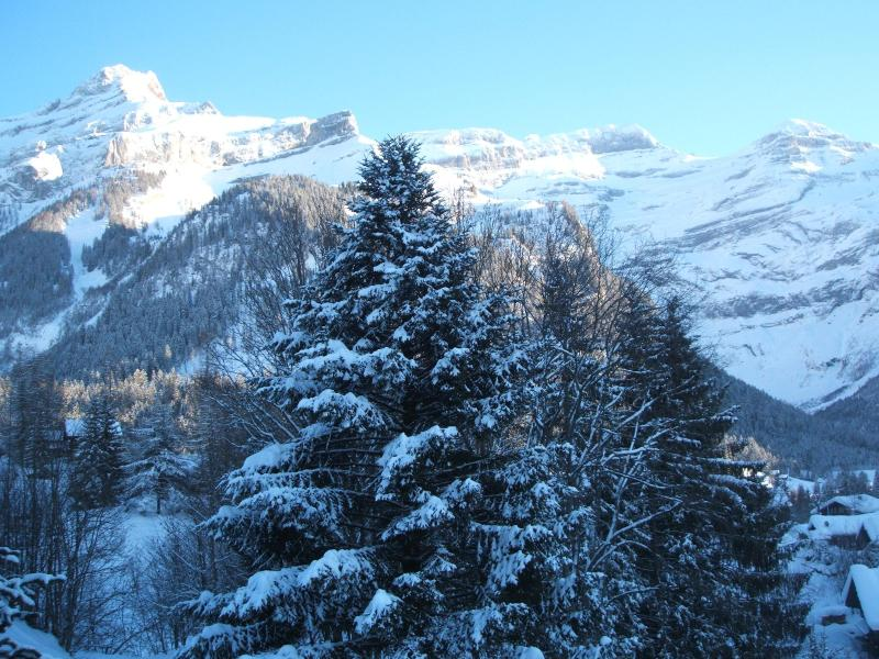 view from the balcony - A6 Le Rocher Les Diablerets Switzerland - Les Diablerets - rentals