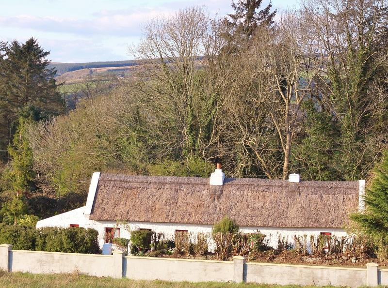 Cottage Mary Rose, 18th century Thatched Cottage, - Image 1 - Castleisland - rentals