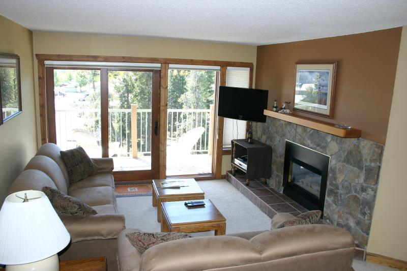 Updated Living Room with Gas Fireplace and HDTV - Updated - Near Downtown-Ski-In-Great Summer Rates - Breckenridge - rentals