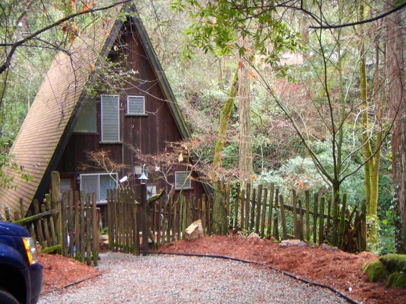 Cottage on the Creek/Under Redwoods - Cottage on the Creek/Nestled Under Redwoods - Felton - rentals