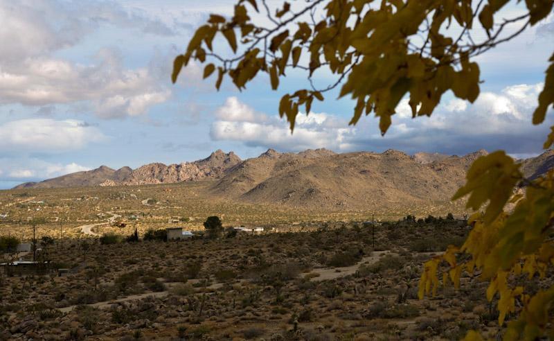 View from Zen House - Zen House - see at JoshuaTreeGetaways.com - Joshua Tree - rentals