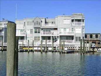 Wonderful Condo in Cape May (3367) - Image 1 - Cape May - rentals