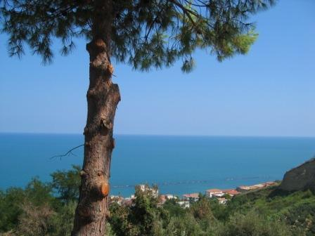 The stunning sea view from the apartment - Coastal apartment with stunning sea view, San Vito - San Vito Chietino - rentals