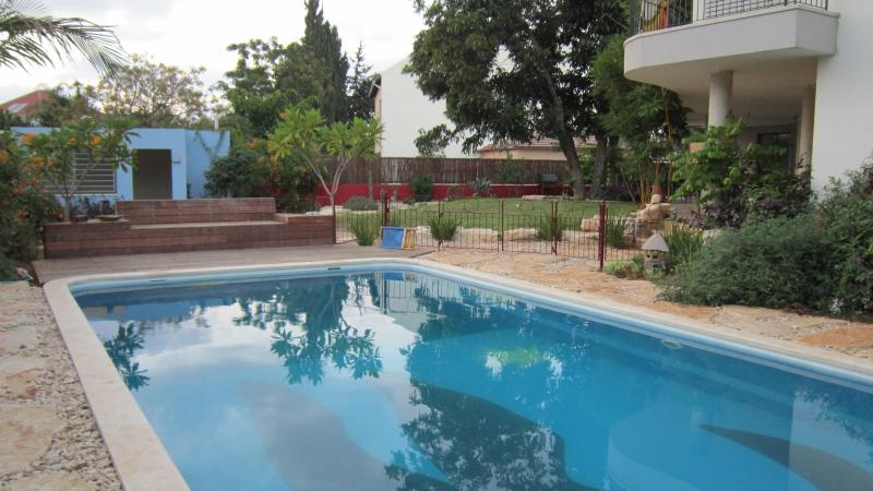 Totally private pool shared with the owner family - Eco Garden Apartment with Private Pool - Herzlia - rentals