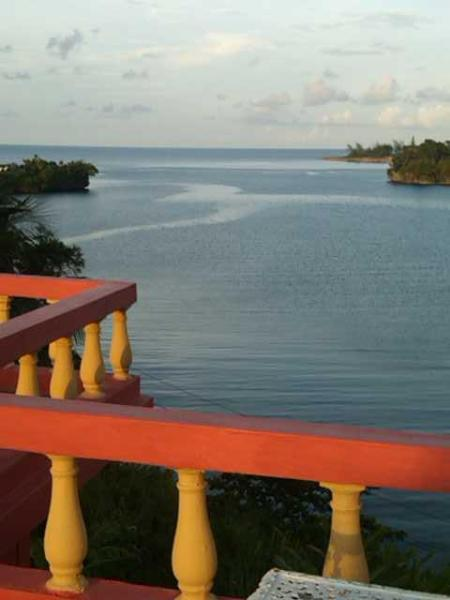 View from Ridge Bay Chateau Roof Top Balcony - Ridge Bay Chateau - Port Antonio - rentals