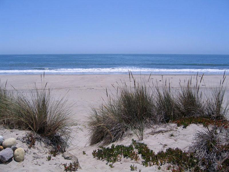 Out the back - Laurant - Stinson Beach - rentals