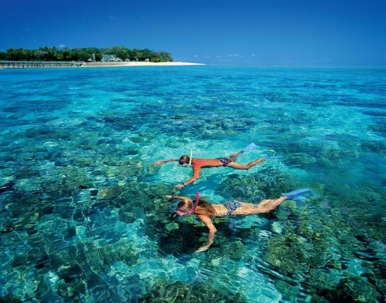 Snorkel The Great Barrier Reef Off Green Island - Free Car Hire when staying 7+ Nts Nov to March 16 - Palm Cove - rentals