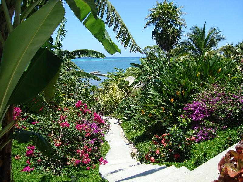 Garden of Eden at our Villa - Awesome! Luxurious and Private Beachfront Villa - Roatan - rentals