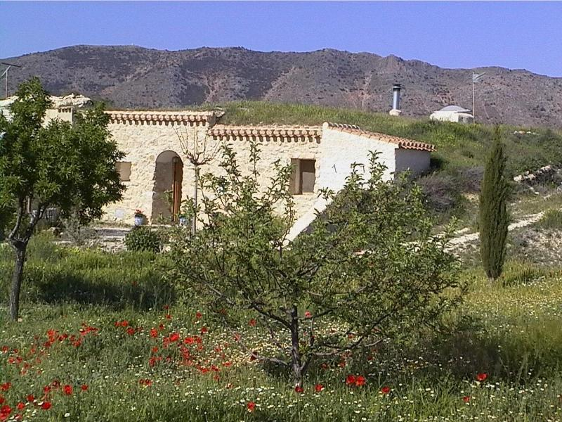 Casa Cueva La Piedra - Rural holiday cave-house, beautiful location, ORCE - Granada - rentals