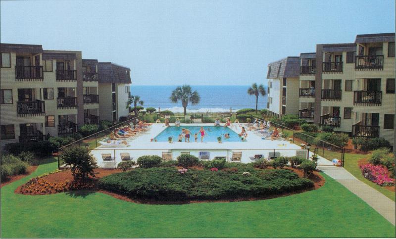 Ocean Forest Villas - Exquisite Oceanview Condo--October 20-50% OFF - Myrtle Beach - rentals