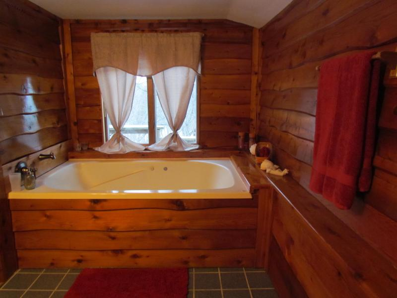 Very roomy bathroom with large double sized whirlpool tub for 2 adults - Kishauwau Cabins near Starved Rock Utica IL Dlx WP - Utica - rentals
