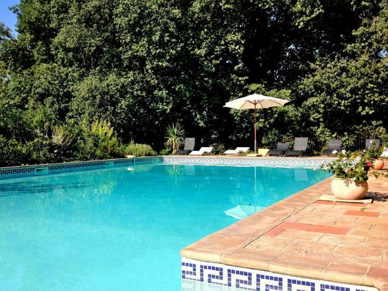 Castle Hermitage de Combas Main heated pool - Charming terraced Apt in Hermitage Wine Castle - Servian - rentals