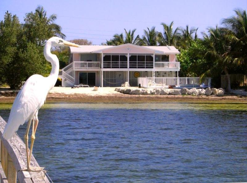 Private Home on Gulf of Mexico with Pool, Spa, Dock - Gerry's Florida House - Marathon - rentals