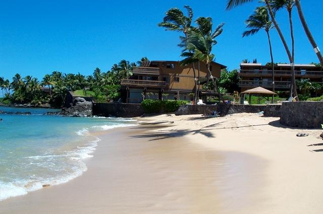 Our private beach facing North - 15% Off! Kahana Sunset 2BR/2BA Remodeled Condo - Lahaina - rentals