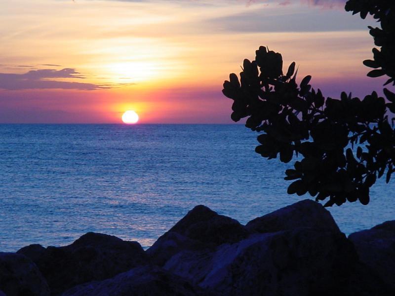 Ocean View - Amazing 3-Bed, 3-Bath Ocean Front Home - Westpunt - rentals