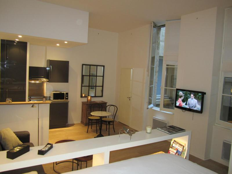 Very nice apartment in front of Grand Theatre - Image 1 - Bordeaux - rentals