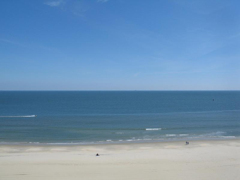 wake up to this view - 3 bedroom beach facing luxurious renovated condo - Virginia Beach - rentals