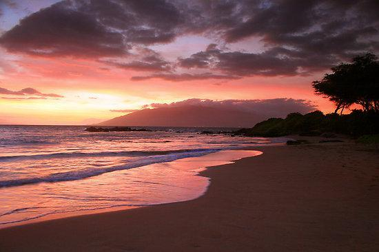 Ooh Awe, ooh awe sunsets from beach close to house - Spectacular Ocean View Walk to Beach Wailea/SKihei - Kihei - rentals