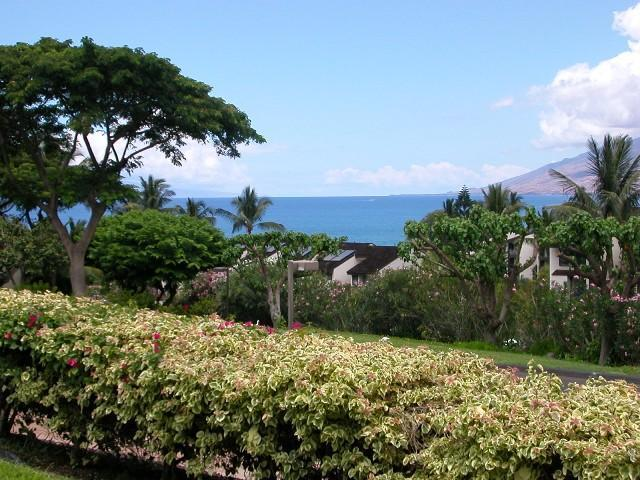 Views from Condo... winter months watch for the whales! - Updated Ocean VIEW Condo, Walk to Beach, 2 pools! - Kihei - rentals