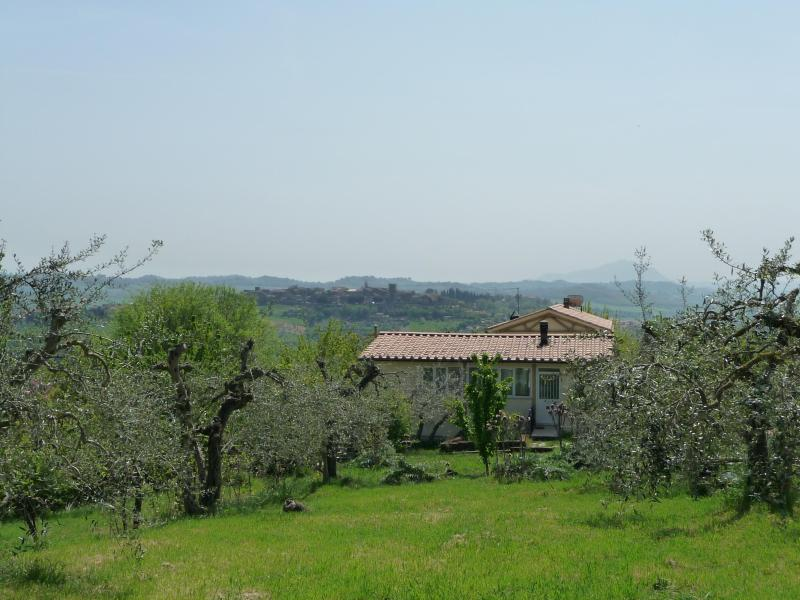 view from the upper end of the property - Paradiso Integrale - beautiful Umbria, the heart of Italy - Otricoli - rentals