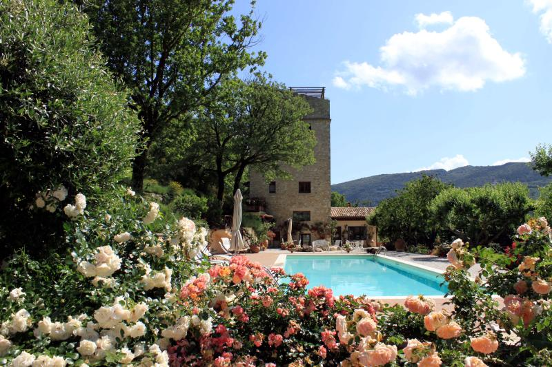 Beautiful stone tower with park and swimming pool - Image 1 - Spoleto - rentals