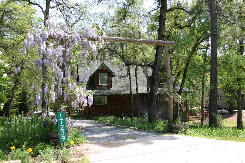 Gorgeous Custom Log Home on Stream - Log House on Trout Stream, Spa, Local Hiking - Grass Valley - rentals