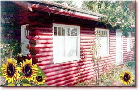 Classic Antique Cabin in Cambria - Classic Antique Cabin in Cambria, ocean and forest - Cambria - rentals