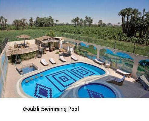 Swimming pool from the roof top restaurant - Neith at Flats in Luxor, swimming pool, restaurant - Luxor - rentals