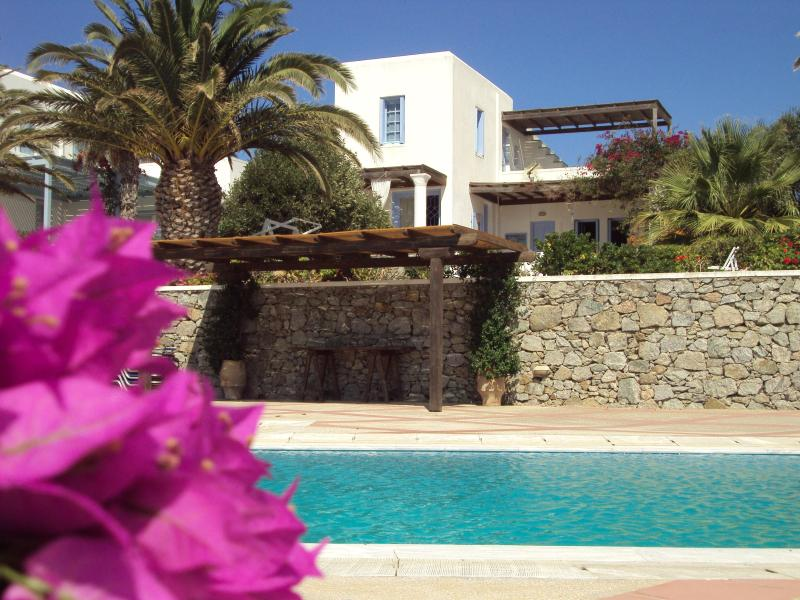 General view of the house and pool - Summer Breeze House - Mykonos - rentals