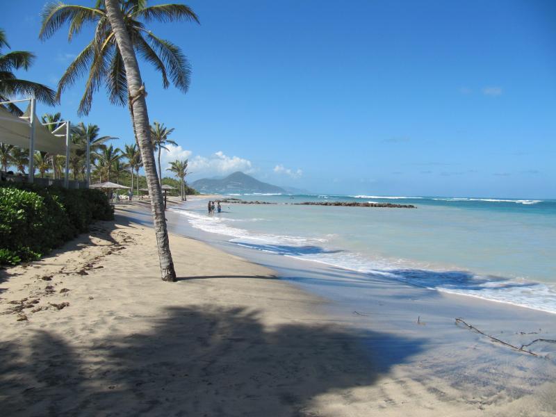 Nisbet's Beach, Nevis - Spacious house on unspoilt Nevis in the Caribbean - Nevis - rentals