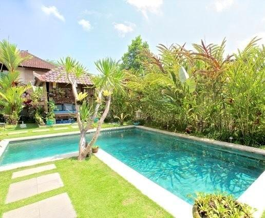 Large pool and gazebo - Villa Semua Suka 3 Bedroom with Bungalow in the Ricefields of Ubud - United States - rentals