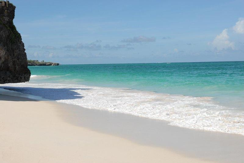 The beach at your doorstep - Mermaid Apartments, The Crane, St. Philip - Saint Philip - rentals
