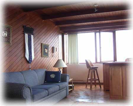Mini Penthouse In Miraflores Oceanview&Pool - Image 1 - Lima - rentals