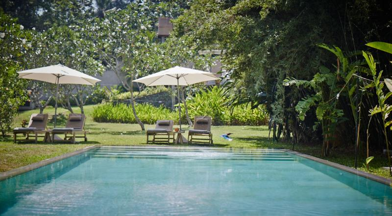 The Petals - tranquil gardens overlooking paddy - Image 1 - Galle - rentals