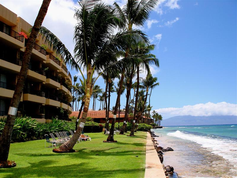 Beach Front - !!! OCTOBER SPECIAL $65 A NIGHT !!!! - Napili-Honokowai - rentals