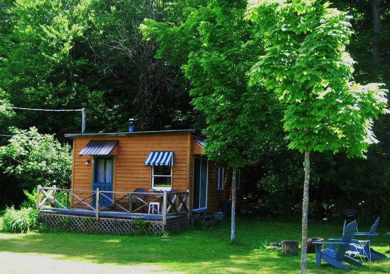 eve's cabin - cozy, private  cabin in beautiful Adirondack valley - Paradox - rentals
