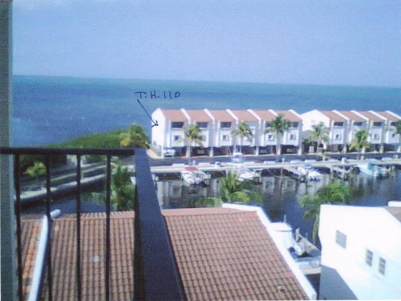Tropical island seclusion in the Florida Keys - Image 1 - Tavernier - rentals