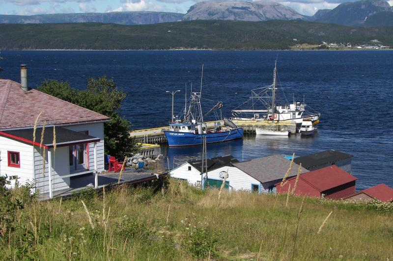 View of the property with cottage on the left warf in the distance. - Whales pass by your door inside National Park - Bonne Bay - rentals