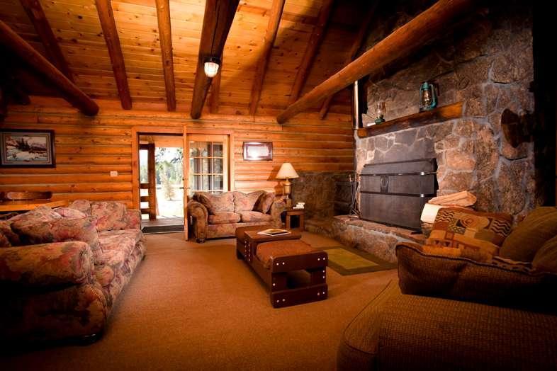 Lakeview cabin living room - 12 guest log cabin premier Ashland Oregon ranch - Ashland - rentals