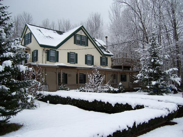 Winter Wonderland for ski season! - Hunter Mountain House of Lanesville 1800's  Resort - Hunter - rentals