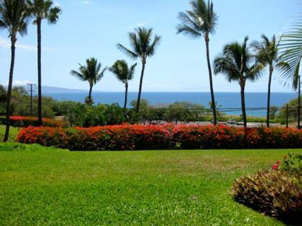 Ocean View - Maui Kamaole Front Row Ocean View G Building - Kihei - rentals