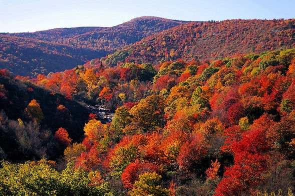 Fall's leaf changing season - the best in the nation! - Fall Colors Special! Only $899/Weekend $1899/Week - Cashiers - rentals