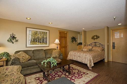 Upgraded Family Room - Gorgeous Ski-in/Ski-out Studio: May 21-25 $89/nt - Breckenridge - rentals