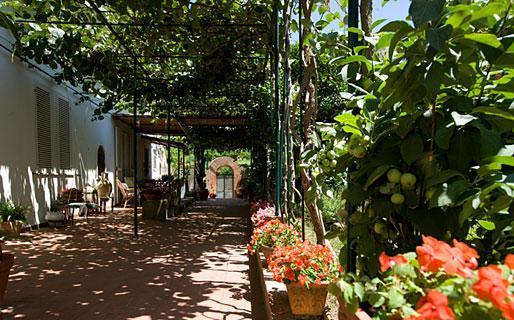 B&B Villa Dei Fiori 5 minutes from - Image 1 - Capri - rentals