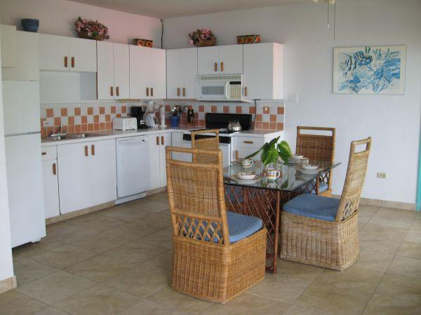 Cinnamon Spice n All Things Nice - Image 1 - Virgin Gorda - rentals