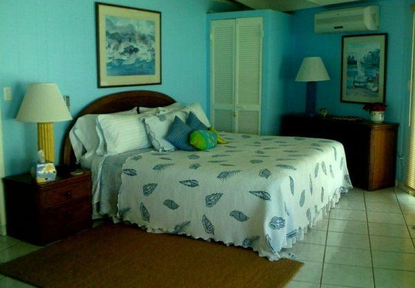 Vista Villa - Image 1 - Virgin Gorda - rentals