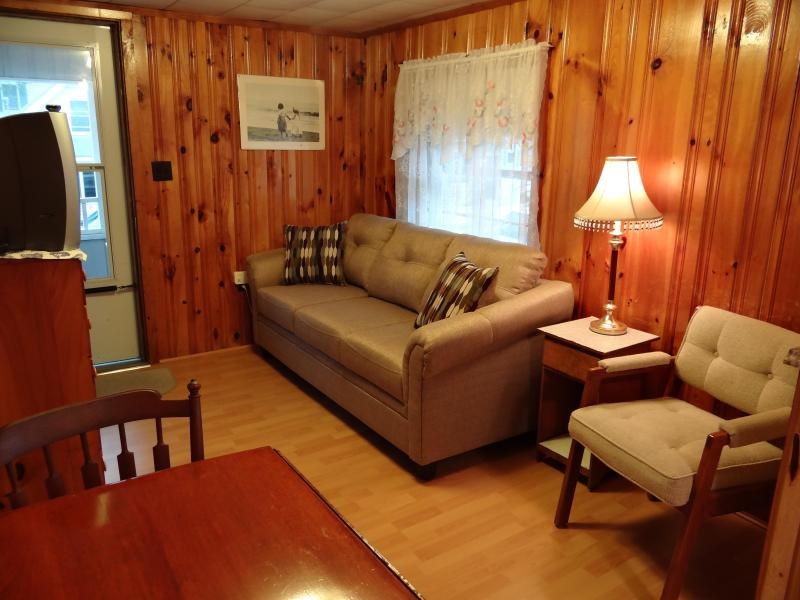 Living room w/ new couch - Newly Renovated Cottage -Island Sect Hampton Beach - Hampton - rentals