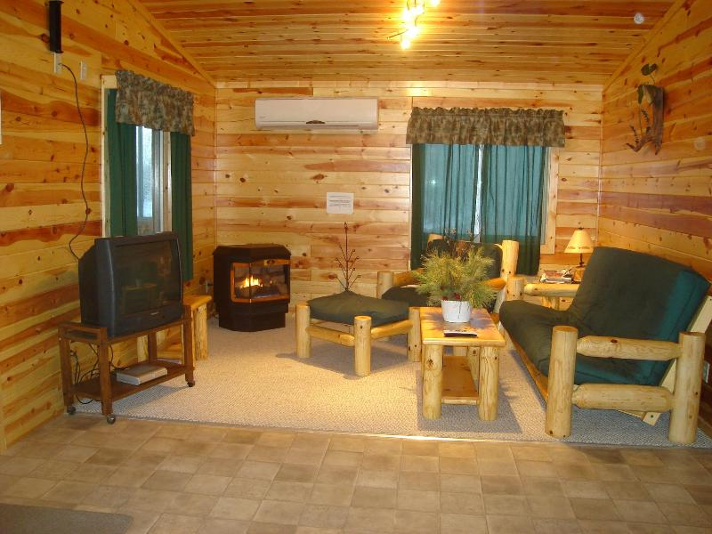 5 BR lakefront lodge in North MN walleye country. - Image 1 - Deer River - rentals