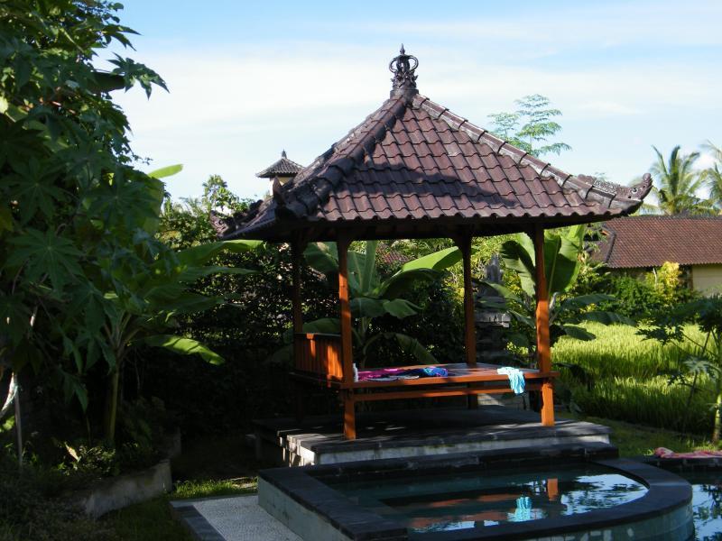 Villa with pool in Ubud - Image 1 - Ubud - rentals