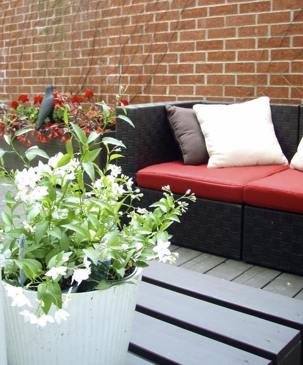 Design Apartment  Most Trendy Aréas -Plateau - Image 1 - Montreal - rentals